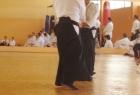 aikido-seminar-13-godina-aikido-kluba-izvor006