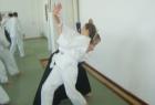 aikido-seminar-13-godina-aikido-kluba-izvor038