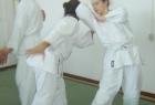 aikido-seminar-13-godina-aikido-kluba-izvor044