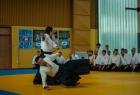 takemusu_aikido_seminar_corallini_2012_07