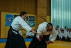 takemusu_aikido_seminar_corallini_2012_09