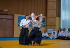takemusu_aikido_seminar_corallini_2012_51