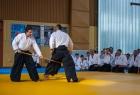 takemusu_aikido_seminar_corallini_2012_56