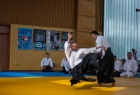 takemusu_aikido_seminar_corallini_2012_62