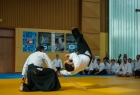 takemusu_aikido_seminar_corallini_2012_77