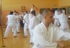 Daniel Toutain Sensei seminar 41