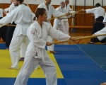 takemusu-aikido-rijeka-seminar-6