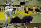 has-seminar-split-2013-12