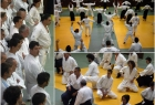 has-seminar-split-2013-4