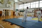 takemusu-aikido-rijeka-seminar-8b