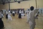Aikido seminar - D.Toutain Sensei - Zagreb