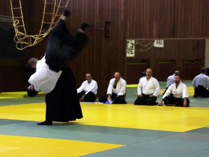 Seminar hrvatskog aikido saveza 2015