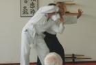 aikido-seminar-13-godina-aikido-kluba-izvor016