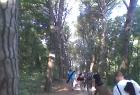 Aikido camp rovinj 25