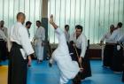 takemusu_aikido_seminar_corallini_2012_11