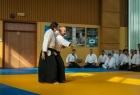 takemusu_aikido_seminar_corallini_2012_15