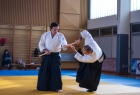 takemusu_aikido_seminar_corallini_2012_23