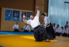 takemusu_aikido_seminar_corallini_2012_58