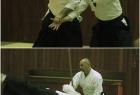 has-seminar-split-2013-11