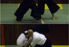 has-seminar-split-2013-6
