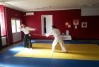 Detalj s Aikido prezentacije - Kumi jo