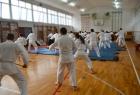 takemusu-aikido-rijeka-seminar-5b