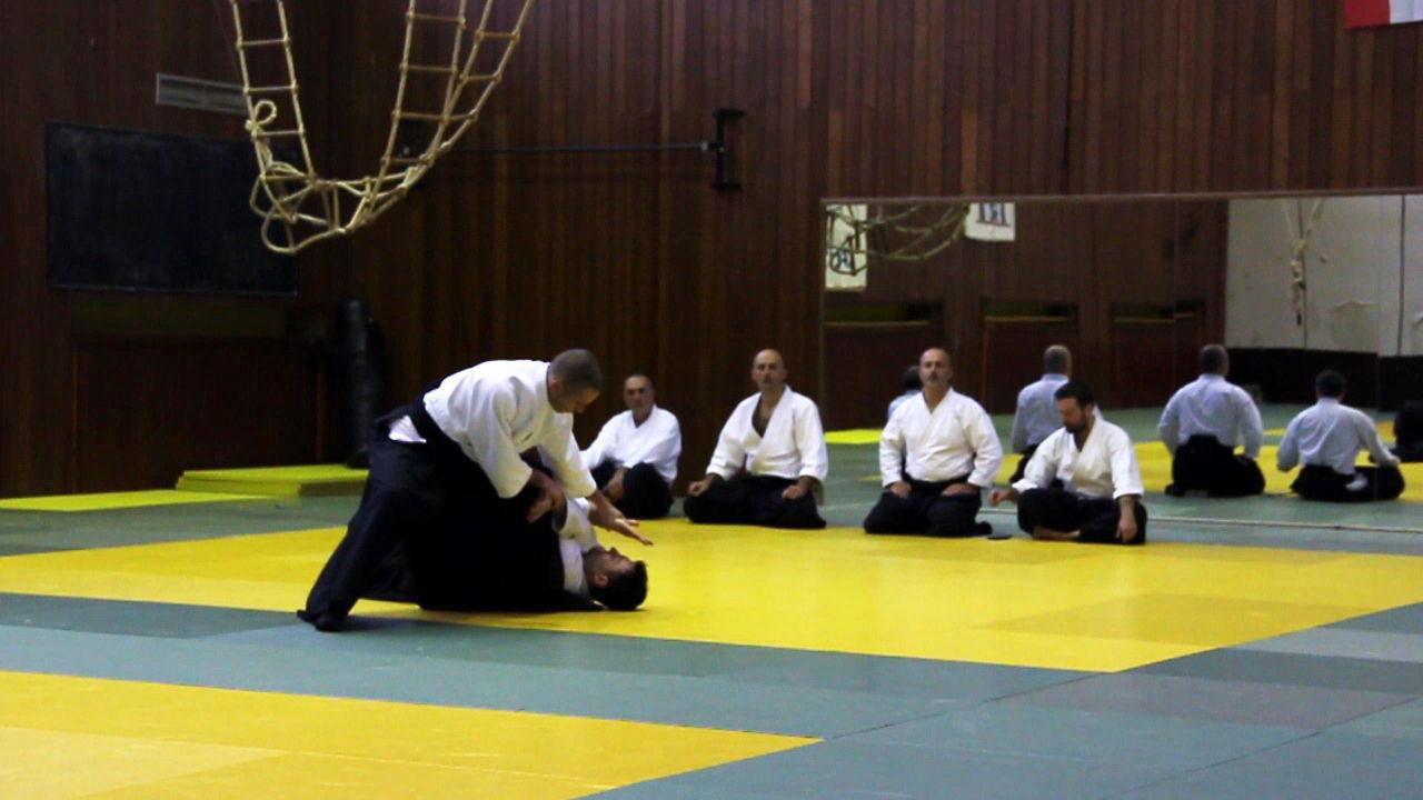 Seminar hrvatskog aikido saveza 2015-2